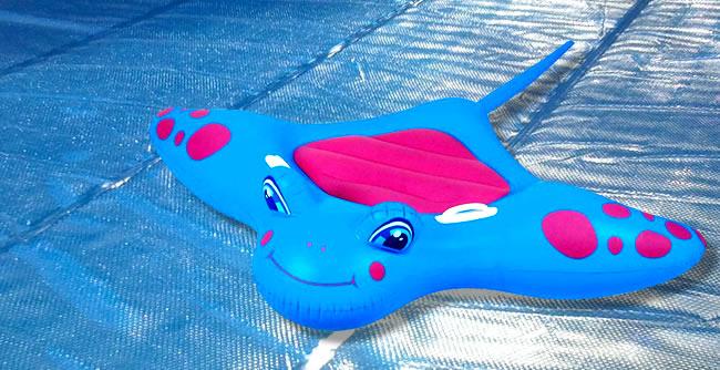 pool covers toys gold coast